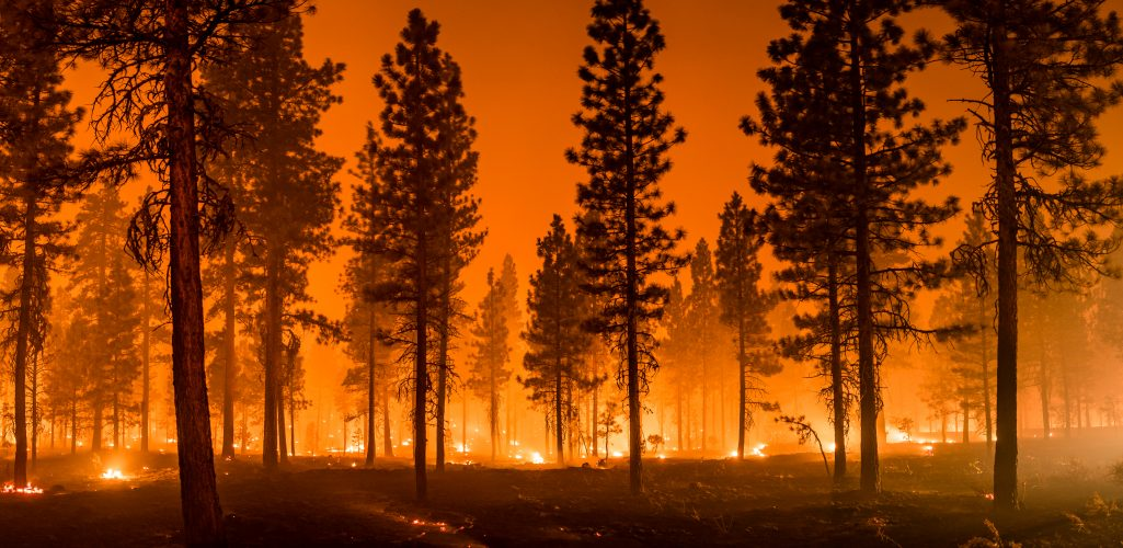 Repair Costs, Disasters Hit Homeowner's Insurance Premiums